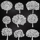 Vektorsamling av konturer för svart tavlastilträd Royaltyfri Fotografi
