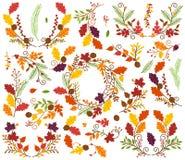 Vektorsamling av Themed blom- beståndsdelar för höst och för tacksägelse Arkivbild
