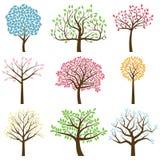 Vektorsamling av trädkonturer Royaltyfria Bilder