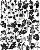 Vektorsammlung Blumen vektor abbildung