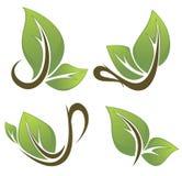 Vektorsammlung natürliche Getränke Lizenzfreie Stockbilder