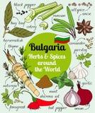 Vektorsatz bulgarische Kräuter und Gewürze Lizenzfreie Stockfotos