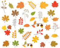 Vektorsatz bunter Herbstlaub stock abbildung