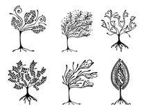 Vektorsatz der Hand gezeichneten Illustration, dekorativer dekorativer stilisierter Baum Grafische Schwarzweiss-Illustration loka Stockbilder