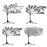 Vektorsatz der Hand gezeichneten Illustration, dekorativer dekorativer stilisierter Baum Grafische Schwarzweiss-Illustration loka Lizenzfreies Stockfoto