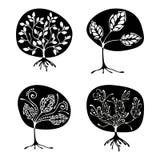 Vektorsatz der Hand gezeichneten Illustration, dekorativer dekorativer stilisierter Baum Grafische Schwarzweiss-Illustration loka Lizenzfreie Stockfotografie