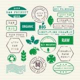 Vektorsatz des gesunden Lebensmittels und der Umwelt der Ökologie Lizenzfreie Stockfotos