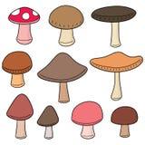 Vektorsatz des Pilzes stock abbildung