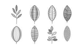 Vektorsatz einfarbige Handgezogene Blätter Natürliche dekorative Elemente in der linearen Art vektor abbildung