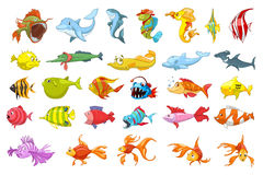 Vektorsatz Fischillustrationen stock abbildung