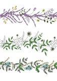 Vektorsatz Gartenpflanzemusterb?rsten mit stilisiertem Lavendel, Vergissmeinnicht, Basilikum, L?wenzahn Hand gezeichnete Karikatu stock abbildung