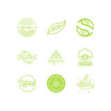 Vektorsatz Grün und Bioproduktaufkleber und -ausweise stock abbildung