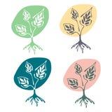 Vektorsatz Hand gezeichnete Illustrationen, dekorativer dekorativer stilisierter Baum Grafische Illustrationen lokalisiert auf de Lizenzfreie Stockfotos