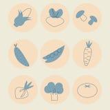 Vektorsatz rundes Gemüse Stockfotos