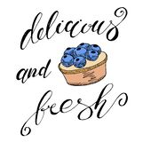 Vektorsatz von Federzeichnungssüßigkeit, Skizze auf weißem Hintergrund, Gestaltungselemente Tee und Kuchen Hand gezeichnete Skizz lizenzfreie abbildung