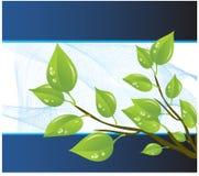 Vektorschablone eines Umweltschutzes Lizenzfreie Stockbilder