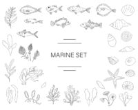 Vektorschwarzweiss-Satz Fische, Seeoberteile, Meerespflanzen lokalisiert auf weißem Hintergrund vektor abbildung
