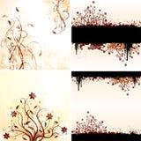 Vektorset av blom- bakgrunder för grunge Royaltyfria Foton