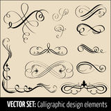 Vektorset av calligraphic designelement och pag Royaltyfri Fotografi
