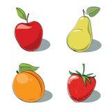 Vektorset Früchte Lizenzfreie Stockbilder