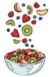 Vektorskizze der Sommerfrucht Stockfoto