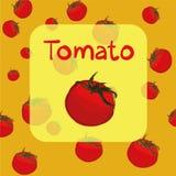 Vektorskizze von frischen ganzen Tomaten stock abbildung