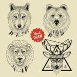Vektorskizze von Köpfen des wilden Tieres tragen, Wolf, Löwe, Rotwild in der Hippie-Art Stockfotografie