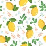 Vektorsommarmodell med citroner och blommor Royaltyfri Foto