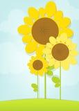 Vektorsonnenblumen Stockbilder