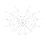 Vektorspindelrengöringsduk för allhelgonaaftondesign eller t-skjorta tryck Cobweb bakgrund isolerad white stock illustrationer