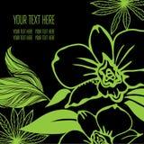 Vektorstilvoller schwarzer Blumenhintergrund Stockfotografie
