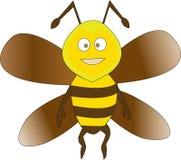 Vektorstudie av Honey Bee royaltyfri foto