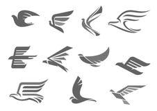 Vektorsymboler av flygfåglar och vingar stock illustrationer