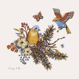 Vektortappning ställde in av blom- vårhälsningkort, med fåglar, granfilialer, bomull, blommor och fjärilar vektor illustrationer