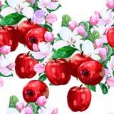 Vektorteckning av äppleblomningar stock illustrationer