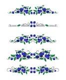Vektortextavdelare med blåbär och sidor Arkivbild