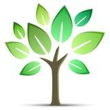 Vektorträd Royaltyfria Bilder