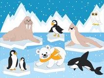 Vektoruppsättning av arktiska djur och fåglar Arkivbilder