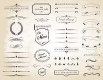 Vektoruppsättning av Calligraphic beståndsdelar för tappning Royaltyfri Foto