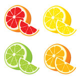 Vektoruppsättning av citronen, apelsin, limefrukt, grapefruktskivor Royaltyfri Fotografi