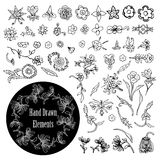 Vektoruppsättning av dekorativa blom- beståndsdelar Vektor Illustrationer