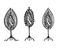 Vektoruppsättning av den hand drog illustrationen, dekorativt dekorativt stiliserat träd Svartvit grafisk illustration som isoler royaltyfri illustrationer