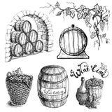 Vektoruppsättning av druva och vinfat royaltyfri illustrationer
