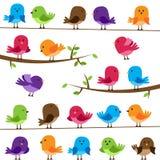 Vektoruppsättning av färgrika tecknad filmfåglar Royaltyfria Bilder