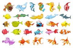 Vektoruppsättning av fiskillustrationer stock illustrationer
