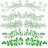 Uppsättning av gröna designbeståndsdelar Arkivbilder