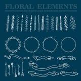 Vektoruppsättning av hand drog blom- kvadrerade och rundade ramar och dekorativa beståndsdelar och prydnader Royaltyfri Foto