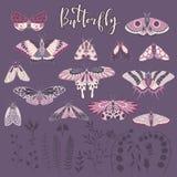 Vektoruppsättning av hand-drog fjärilar, bokstäver och växter Arkivbild