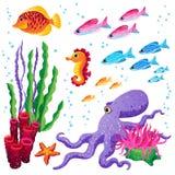Vektoruppsättning av havsdjur och havsväxter. Arkivfoto