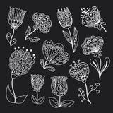 Vektoruppsättning av klotterblommor Vektor Illustrationer